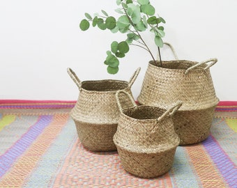 SPRING SALE 20% / Seagrass Basket for Planter and Spray in 3 Sizes / Panier Boule Natural Belly Storage Organizer / Flower Branch Planter