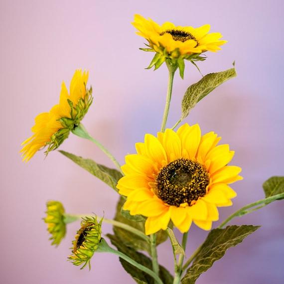 Möbel Wohnen Künstliche Chrysanthemen Papier Blumen