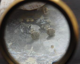 SHELL Sterling Silver 925 Ear Stud