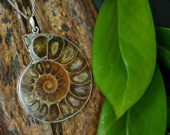 AMMONITE FOSSIL Sterling Silver 925 Pendant
