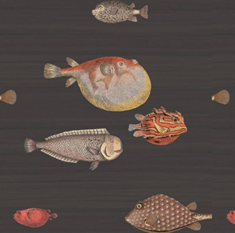 Cole And Son Acquario Wallpaper Cole And Sons Wallpaper Fish Wallpaper