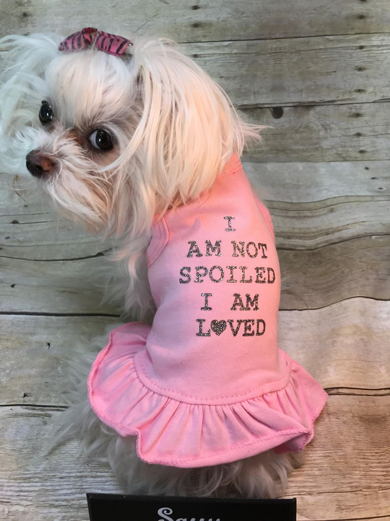 Dog dress I am spoiled dog outfit pet outfit outfit for image 1