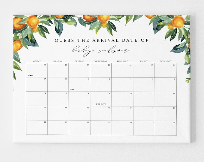 Guess the Birthday Baby Shower Game, Baby Due Date Sign, Baby Calendar, Printable, Editable Template, Instant Download, Templett #084-103GDD