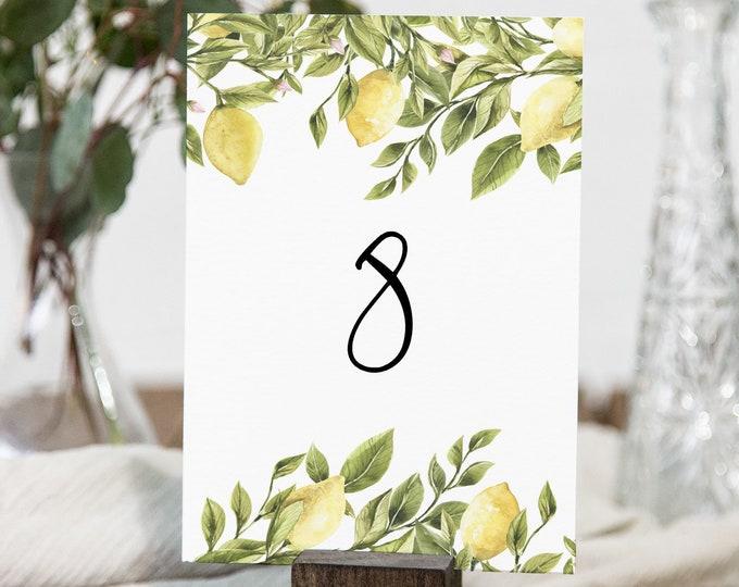 Lemon Table Number Card Template, Printable Table Number, Summer Citrus Wedding, Editable, INSTANT DOWNLOAD, Templett, DIY 4x6 #089-159TC