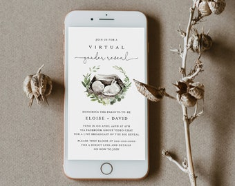 Virtual Gender Reveal Invitation Template, Social Distance Gender Reveal Evite, 100% Editable, Instant Download, Templett #0005-102GR
