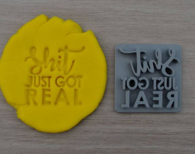 Shit Just Got Real Imprint Cookie/Fondant/Soap/Embosser Stamp