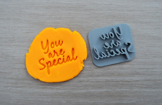 You Are Special Imprint Cookie/Fondant/Soap/Embosser Stamp