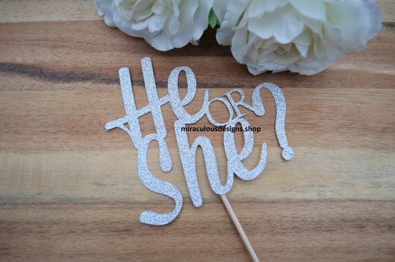 He or She Cake Topper - Baby Shower Reveal Cake Topper - Baby Boy Baby Girl Cake Topper