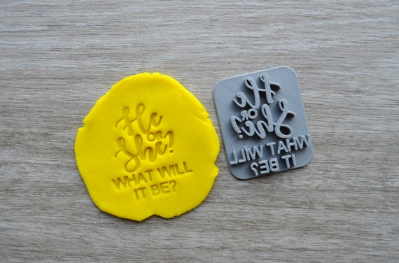 He or She What Will It Be Imprint Cookie/Fondant/Soap/Embosser Stamp