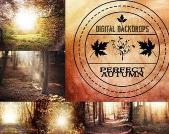 Perfect Autumn - 15 digitale Backdrops