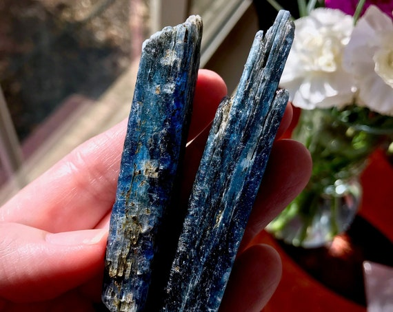 Two (2) Dynamic Indigo Kyanite Blades (54 grams) - Zimbabwe | Translucency | Astral Travel | Chakra Balancing | Third Eye | KY-B