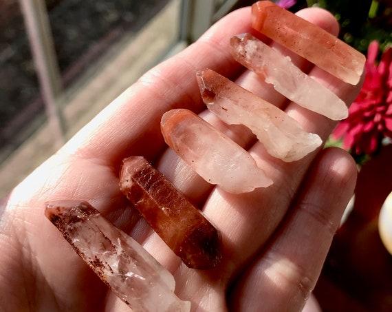 Six (6) RARE Orange River Phantom Quartz Points from South Cape, South Africa | Red Phantom Crystal | Hematite Phantom | RARE Crystal | R3-4