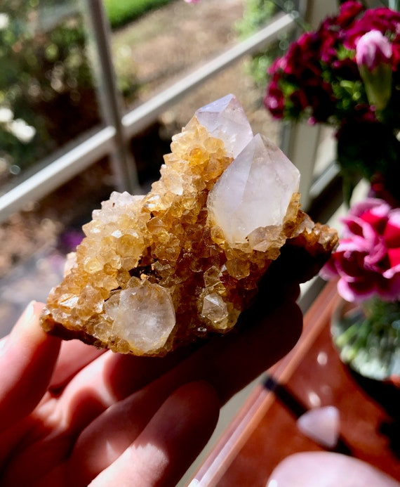 Striking Amethyst Sunshine Spirit Quartz - South Africa | Solar Plexus | Manifestation | Golden Healer Spirit Quartz | Limonite | T251V