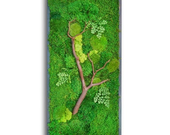 """18x36"""" Moss Wall Art with Manzanita branches. Real preserved zero-care green wall. Real preserved moss."""