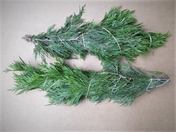 Christmas Greenery Centerpieces.Greenery For Wreath Greenery For Centerpieces Greenery For Bouquet Real Greenery Garland Christmas Greenery For Crafts Christmas Garland