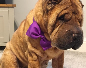 Dog collar bows doggy bow ties doggy dickie bows dog collar accessories bows for dogs detachable dog bows dog bow ties bows for dogs bows