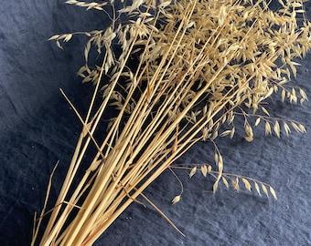 Wild oats bundle, dried grass for floral arrangements, natural straw color bouquet