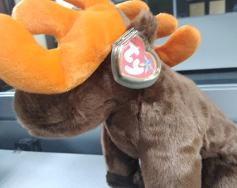 c2af61885e6 TY Beanie Buddies Chocolate the Moose (from the beanie babies BUDDIES  collection)
