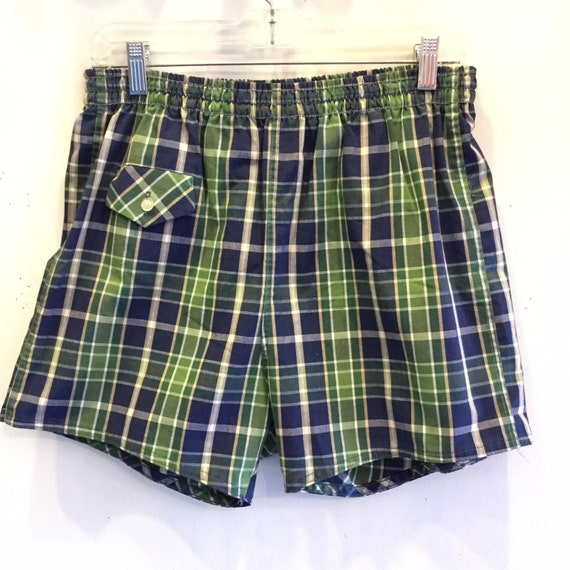 Swim Trunks 1950 Green and Blue Plaid Swim Shorts