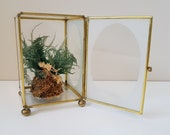 Vintage Brass and Glass Display Box, Terrarium Container, Curio