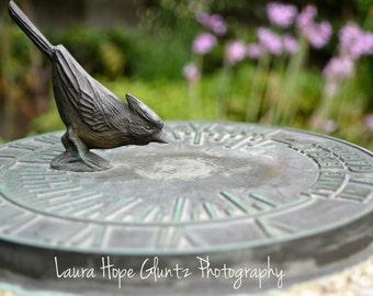 Sundial - Toledo Botanical Garden - Garden Photography - Nature Photography - Home Decor - Cottage Decor - Fine Art Photography