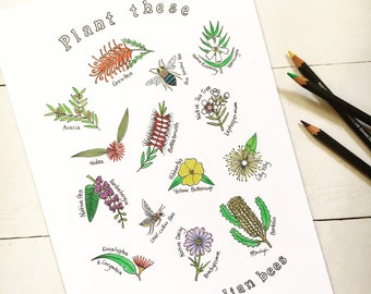 Plant these to save Australian bees printable illustration; colour in home activity homeschool Australia adult colouring