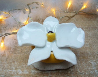 White Orchid to decorate his home ceramic handmade