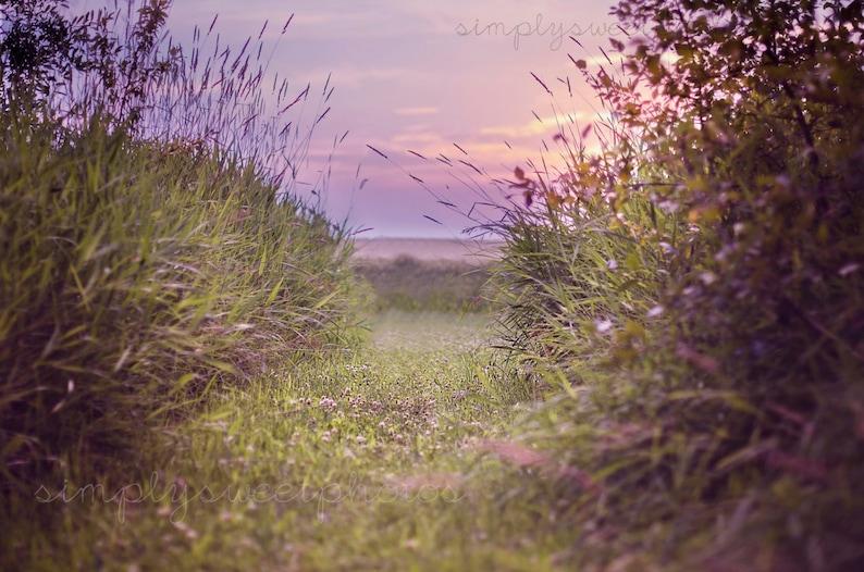 Digital Background Wheat Field Sunset image 0