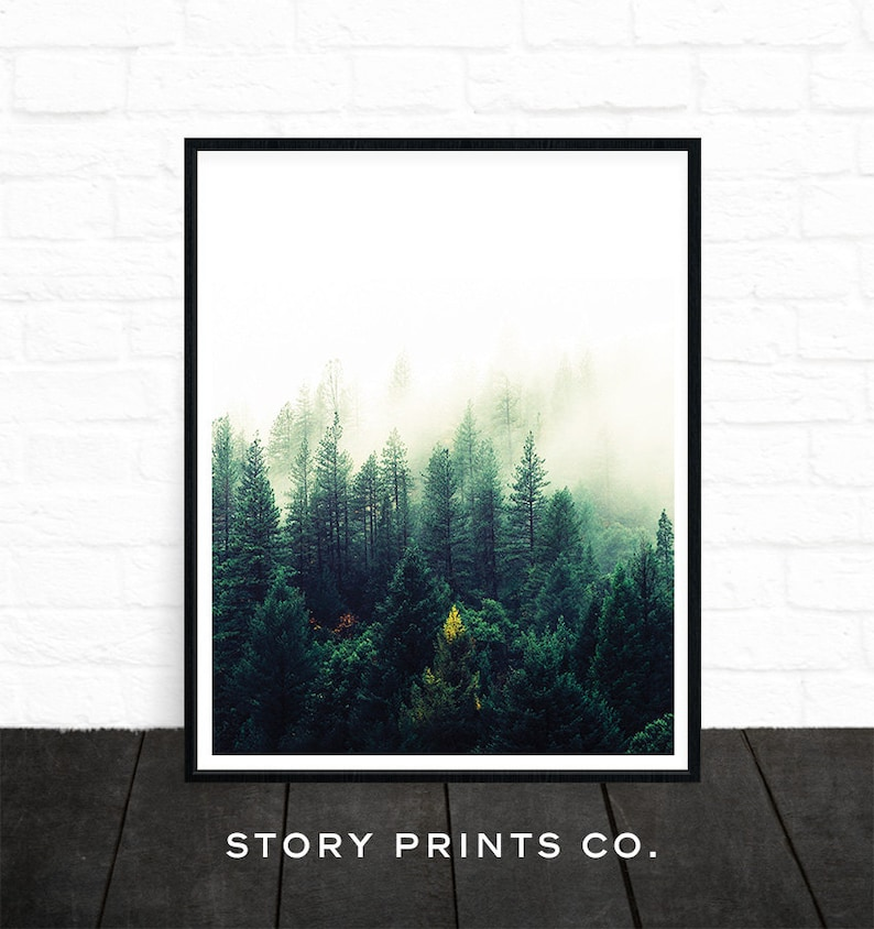 Forest Print Nature Prints Forest Photography Forest Wall image 1
