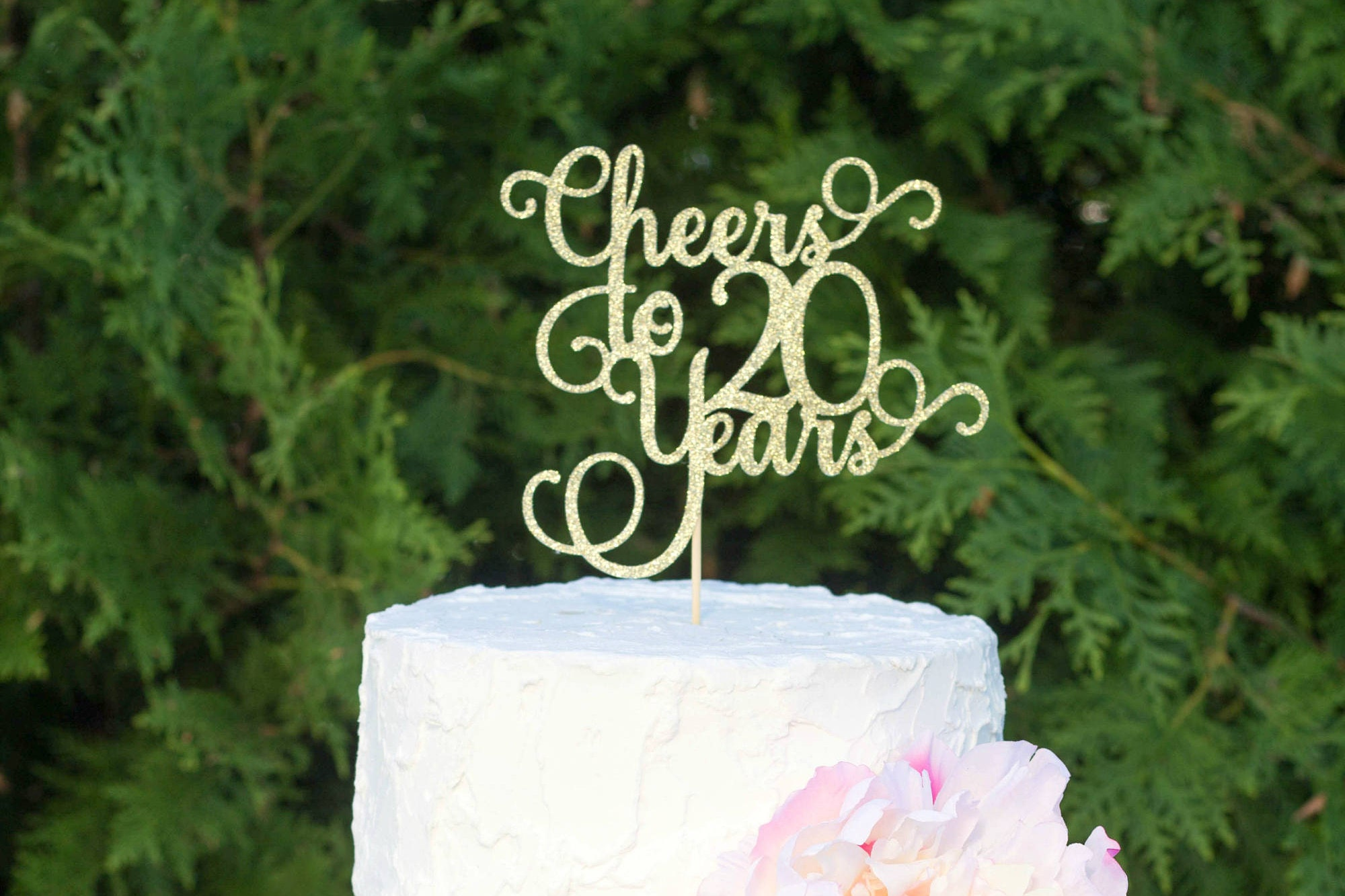 Cheers To 20 Years 20th Birthday Cake Topper Dirty 20 Cake Topper
