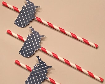 12 Red White and Blue Straws 4th of July Straws Patriotic Straws Birthday Straws BBQ Straws