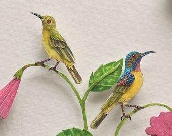 Bird - Pollinator - Brown throated sunbird - Hibiscus - Pollination - art - botanical - gift - watercolour art - paper cut - paper art