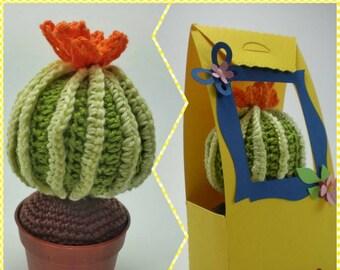 Crochet Cactus Amigurumi - Lei è Cecilia ..