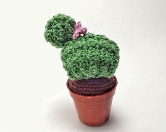 Crochet Amigurumi Succulent - cactus - Lei è Francine.. cactus amigurumi