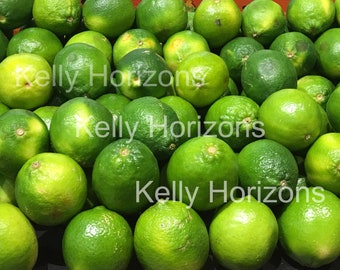Photography / Limes / Digital Download