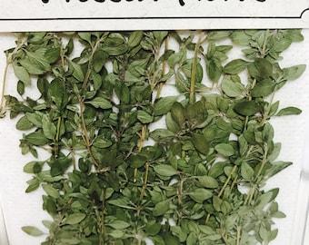 Thyme 24 herbs