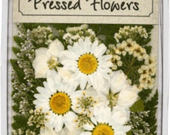 White Flowers with Greenery - 20 pieces