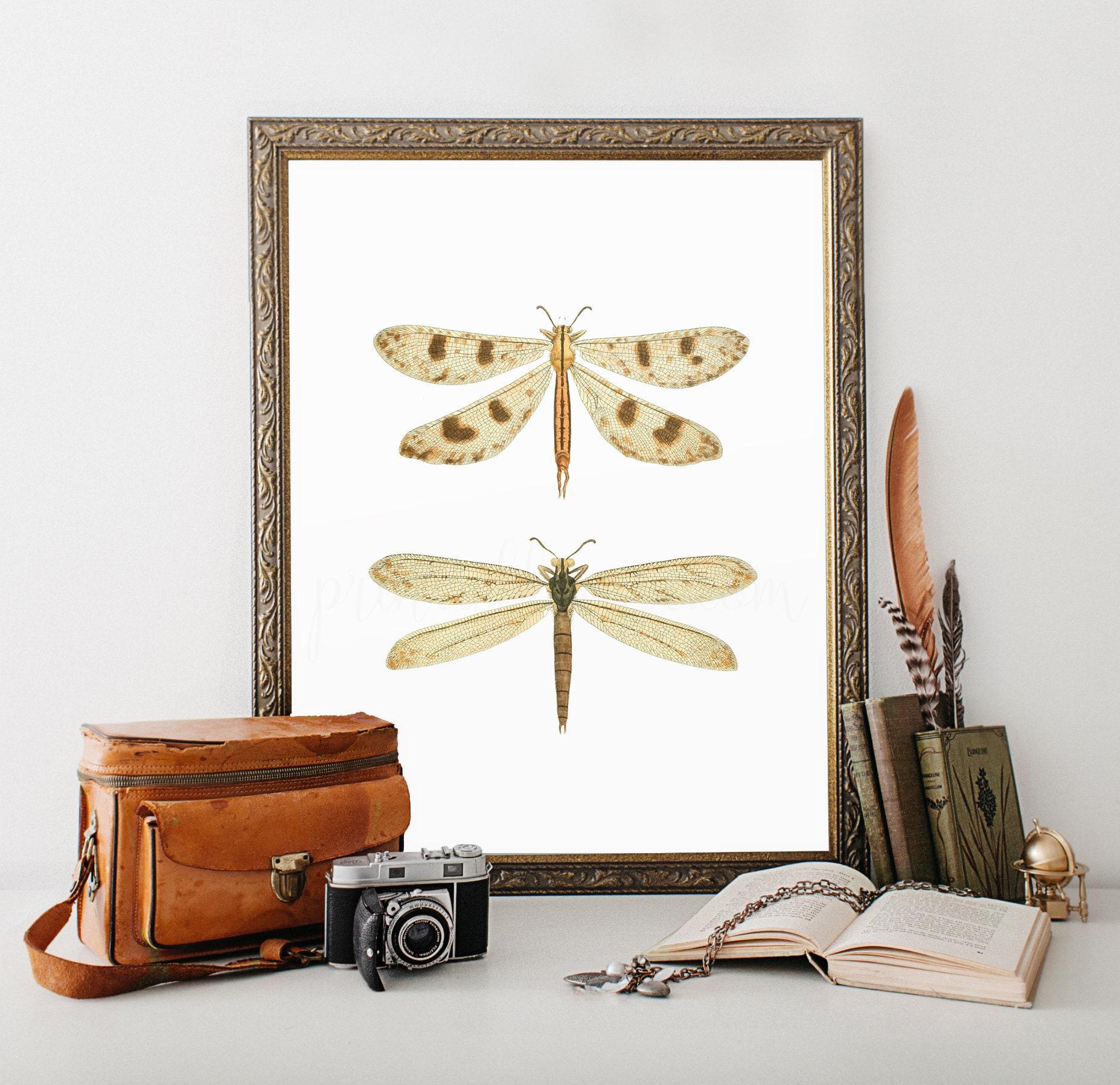 Dragonfly Print, Dragonfly Bathroom Wall Decor