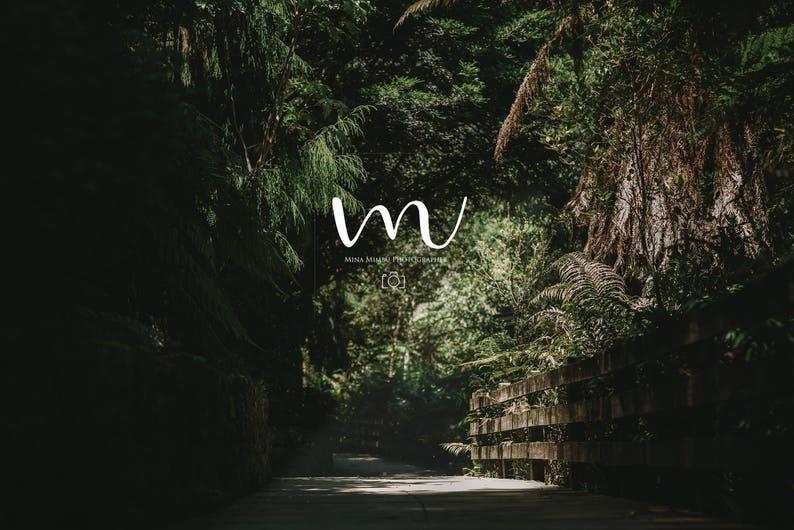 Beautiful Forest Digital Background Etsy