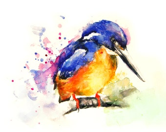 Bird, Original Watercolor Painting, Bird Painting, Color bird, Boba painting