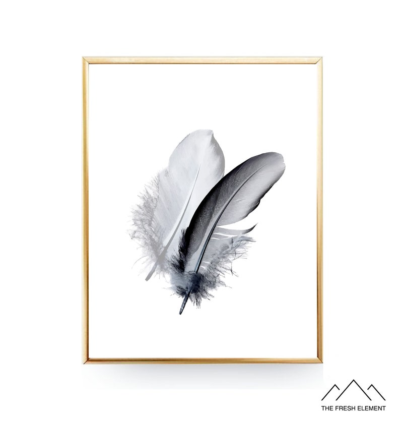 graphic relating to Feather Printable called Feather PRINTABLE Wall Artwork Print Bed room Printable Feather Artwork Print Feather Wall Artwork Feather Poster Feathers Print Black Feather Print Artwork