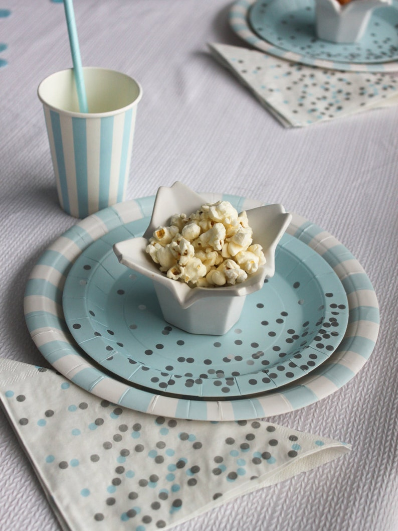 Light Blue Dinner Plates  Blue Party Plates   Blue Paper Plates  Light Blue Striped Party Plates  Baby Boy Shower Plates  Gender Reveal