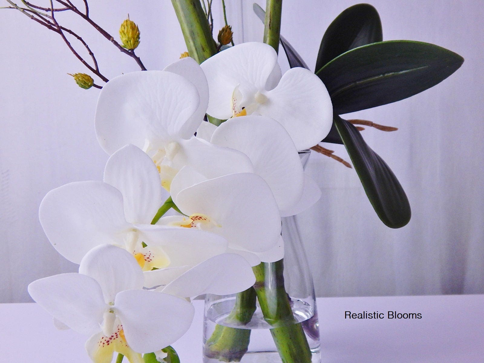 Perfect White, silk, orchid/orchids, phalaenopsis, plant, faux water  MV29