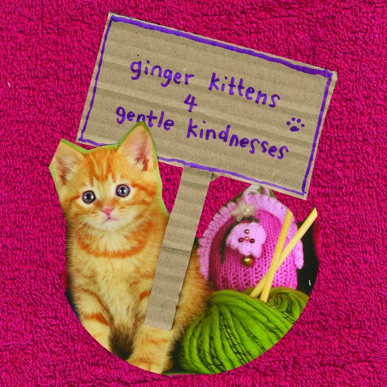 Ginger kitten postcards set of 3 image 1