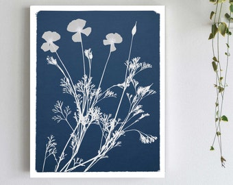 California Poppy Cyanotype Botanical Print - Pressed Flower on Blue Background - Blue and White Wall Art Print - California Art Nature Decor