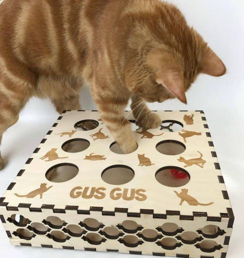 ab17648e24495 Jouet pour chat jouet chaton Kitten Puzzle boîte à chat