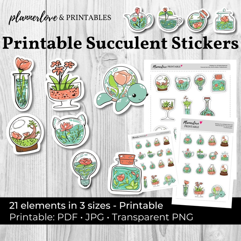 Printable Succulent Stickers Whimsical Hand Drawn Stickers image 0