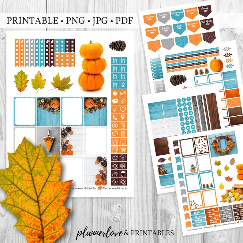 Printable Fall Planner Sticker Kit Natural Fall Leaves Theme image 0