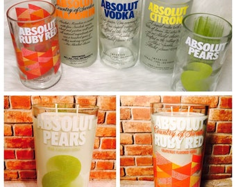 Absolut Vodka Bottle CandleVaseSucculent PlanterGlass Container