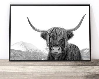 74d7f925eb6 Highland Cow Print